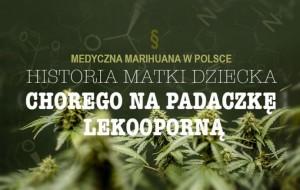 Walka Matki Dziecka Chorego na Epilepsję o Medyczną Marihuanę, jamaica.com.pl
