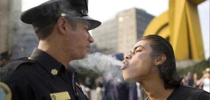 5 Gifów Pokazujących Jak Reagujesz, Kiedy Policjant Złapie Cię z Marihuaną, jamaica.com.pl