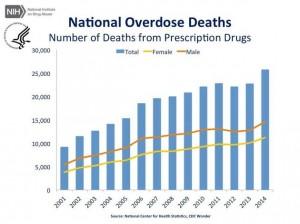 Oto Ile ludzi śmiertelnie przedawkowało marihuanę w ostatnim roku, jamaica.com.pl