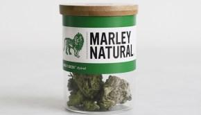 Marley-Natural-6541
