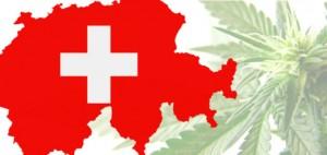 szwajcaria-marihuana-6956