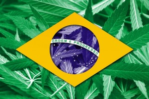 BrazilFlag-over-Cannabis-Leaves-1055