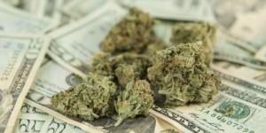 marihuana-pieniądze-6965