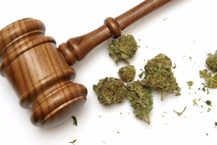 Amerykański Sąd Zakazuje Ścigania Dealerów Marihuany, jamaica.com.pl