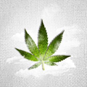 Marihuana nie zwiększa ryzyka depresji, jamaica.com.pl