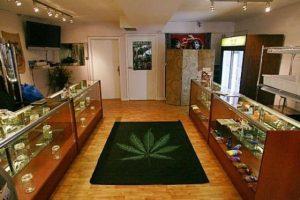 Syn Boba Marleya otwiera sklep z marihuaną, jamaica.com.pl
