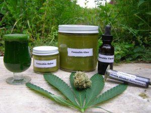 konopie-medyczne-wykorzystanie-leczenie-1