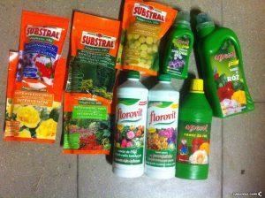 Ile nawozu używać przy uprawie marihuany?, jamaica.com.pl