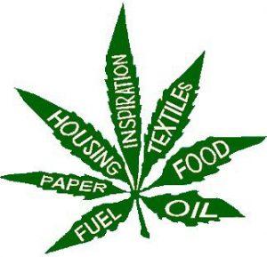 Dlaczego marihuana szybko stanie się poważnym zagrożeniem dla rynku tytoniowego i alkoholowego?, jamaica.com.pl