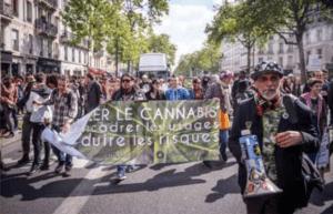 Dekryminalizacja we Francji, jamaica.com.pl