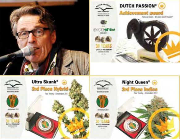 Sukces na Dutch Passion Cannabis Cup, jamaica.com.pl