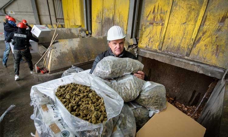 Niemiecka straż celna spaliła ponad pół tony marihuany, jamaica.com.pl