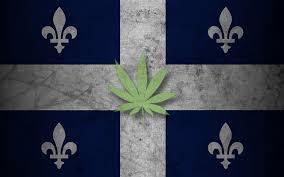 Prawo cannabisowe w Quebec   Kanada, jamaica.com.pl